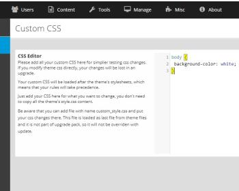 custom css in my future themes