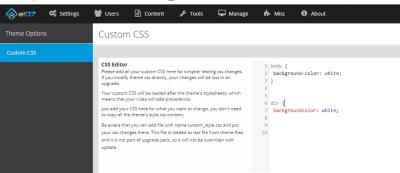 themeoptions_custom_css_check.jpg